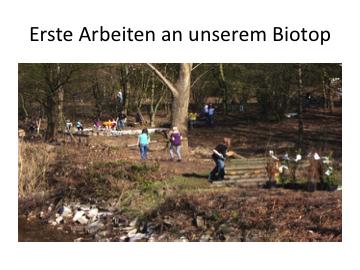 biotop1